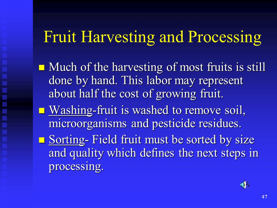Fruit Harvesting and Processing
