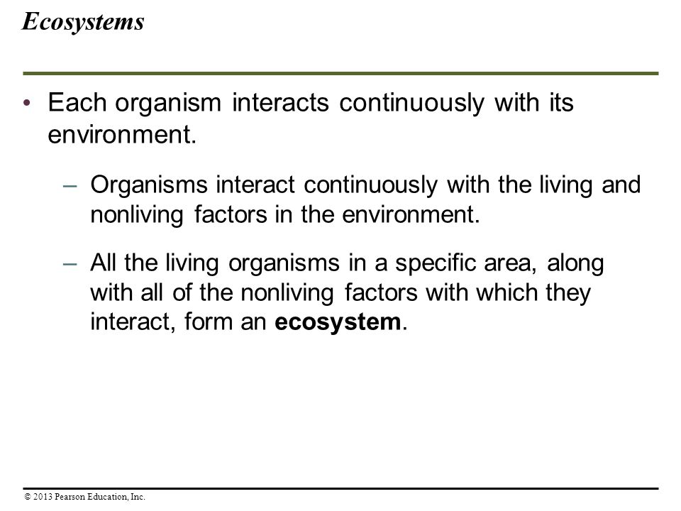 Each organism interacts continuously with its environment.