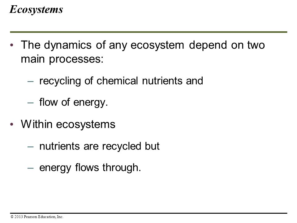 The dynamics of any ecosystem depend on two main processes: