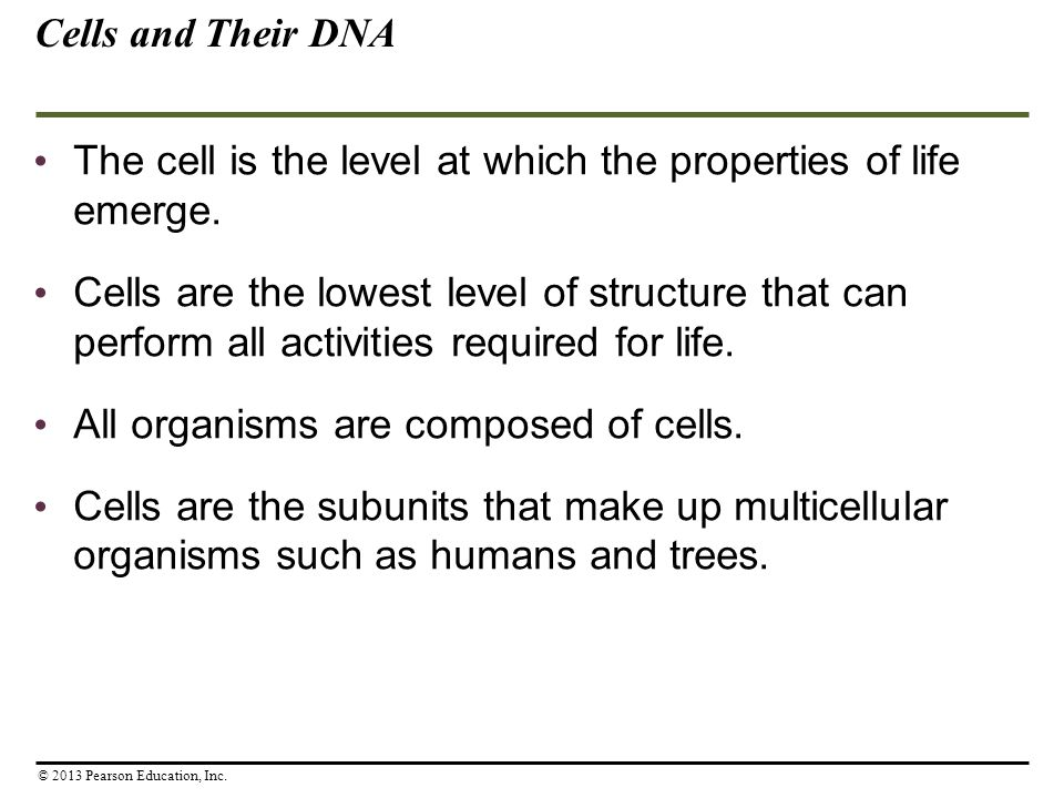The cell is the level at which the properties of life emerge.