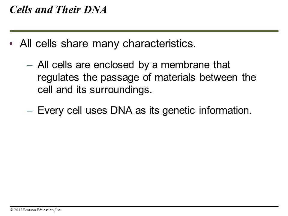 All cells share many characteristics.