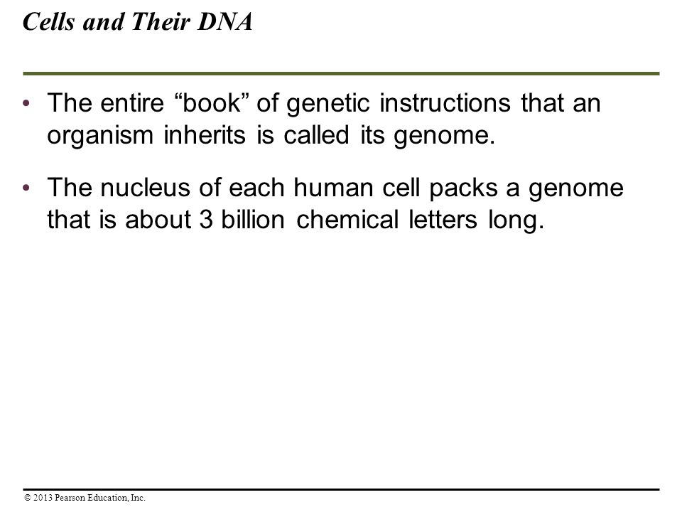 Cells and Their DNA The entire book of genetic instructions that an organism inherits is called its genome.