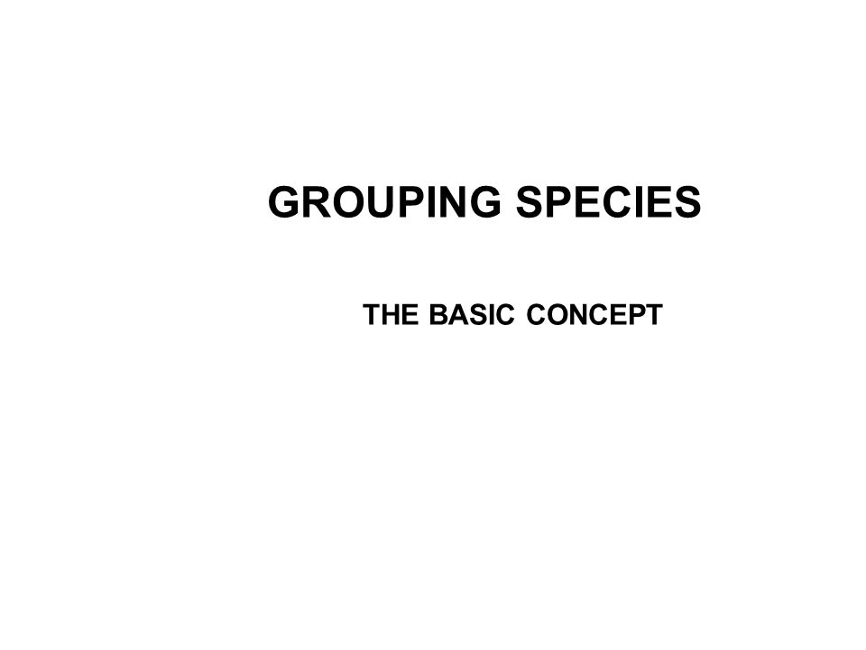GROUPING SPECIES THE BASIC CONCEPT