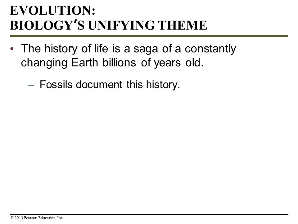 EVOLUTION: BIOLOGY'S UNIFYING THEME