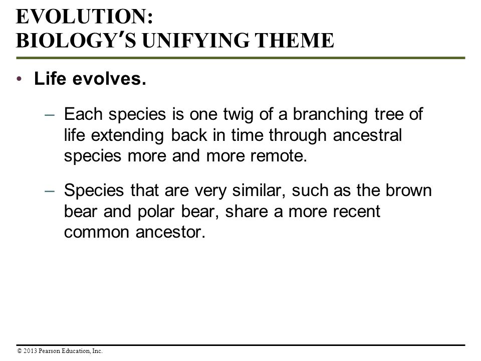 EVOLUTION: BIOLOGY'S UNIFYING THEME
