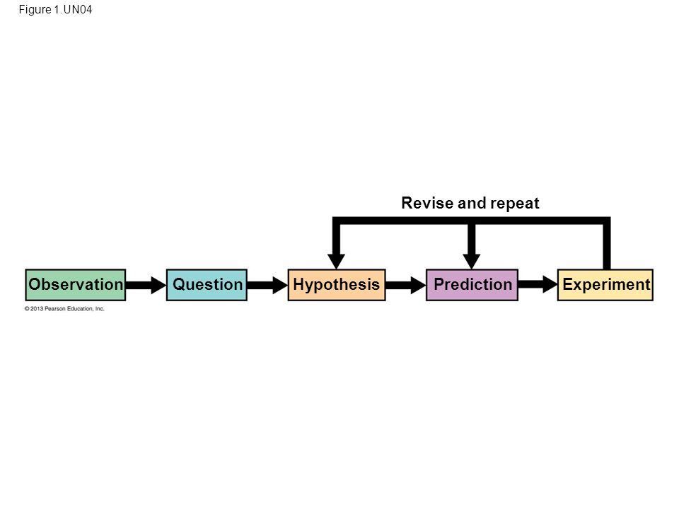 92 Revise and repeat Observation Question Hypothesis Prediction
