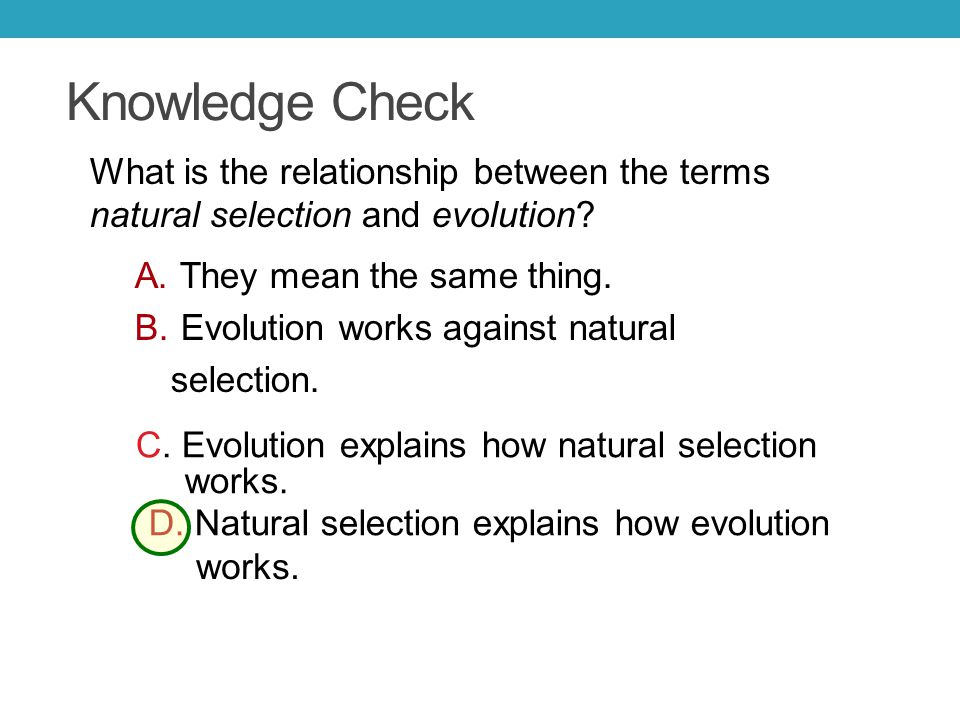 Knowledge Check What is the relationship between the terms