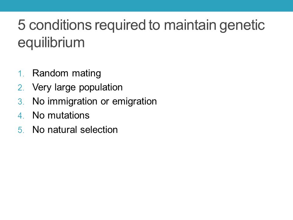 5 conditions required to maintain genetic equilibrium