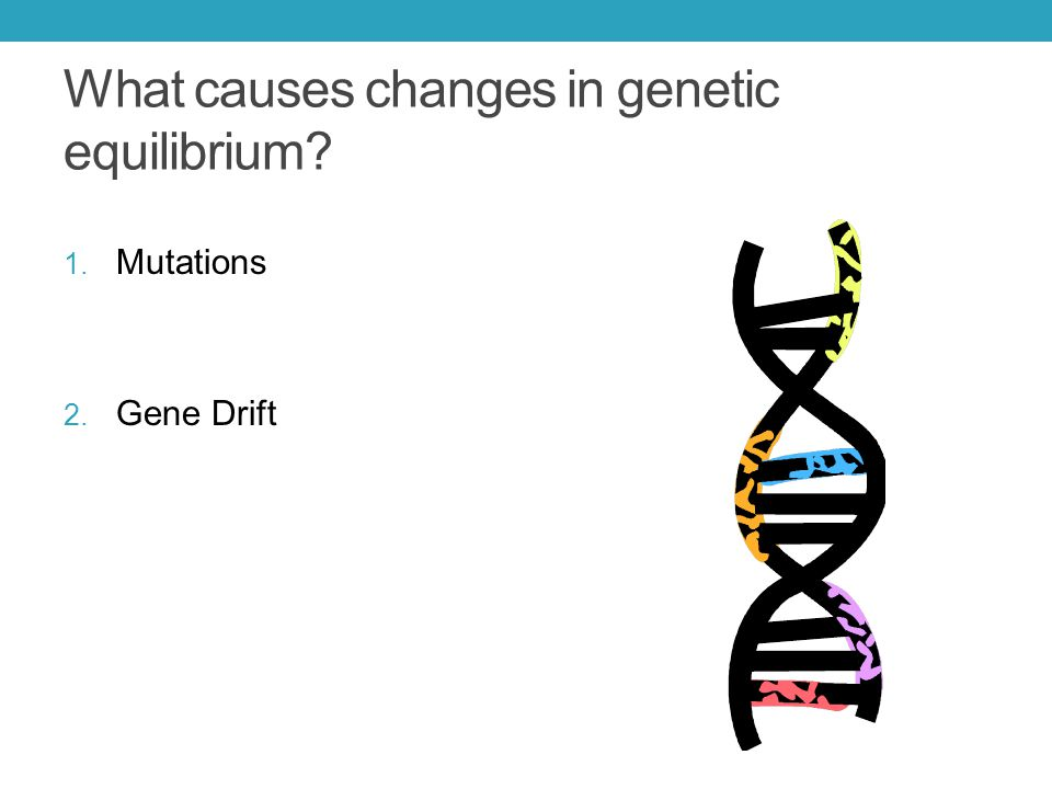 What causes changes in genetic equilibrium
