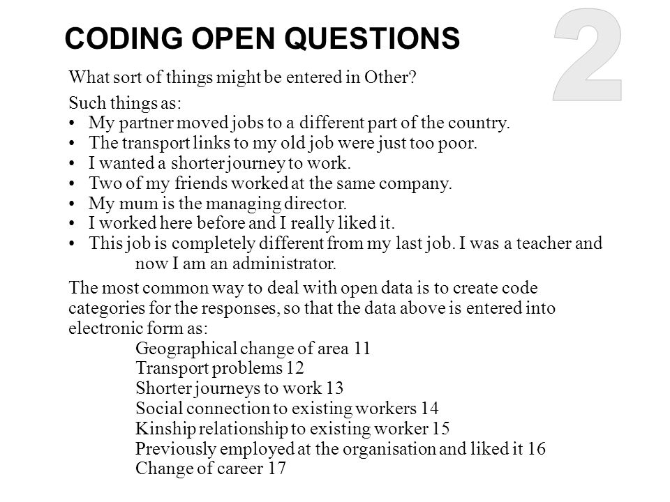 2 CODING OPEN QUESTIONS What sort of things might be entered in Other