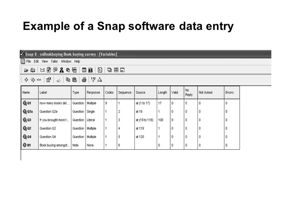 Example of a Snap software data entry