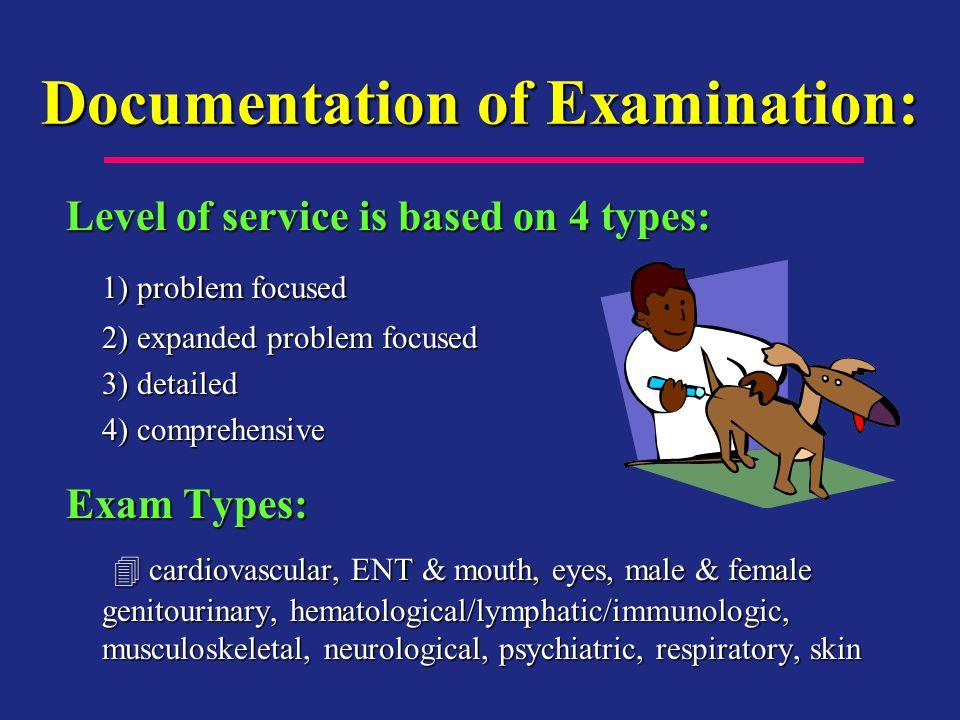 Documentation of Examination: