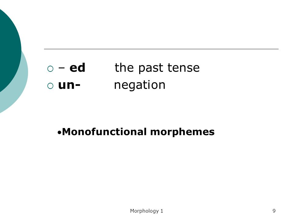– ed the past tense un- negation Monofunctional morphemes Morphology 1