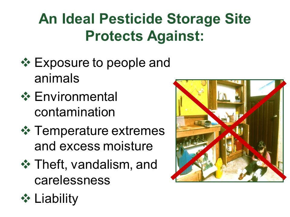 An Ideal Pesticide Storage Site Protects Against: