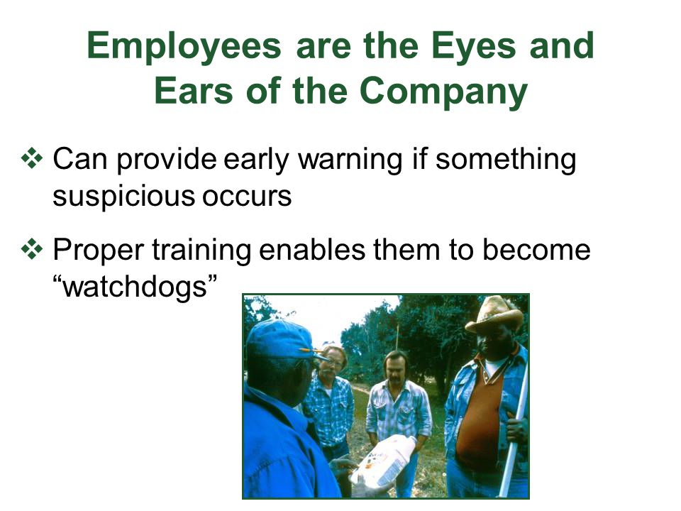 Employees are the Eyes and Ears of the Company