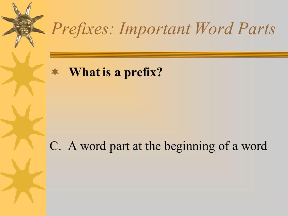 Prefixes: Important Word Parts
