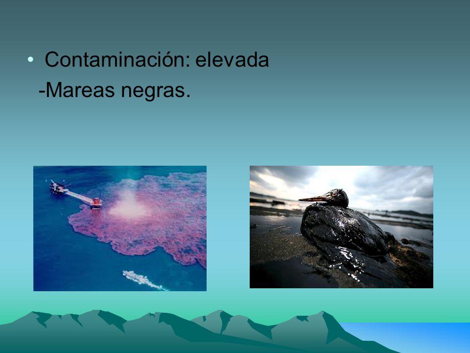 Contaminación: elevada