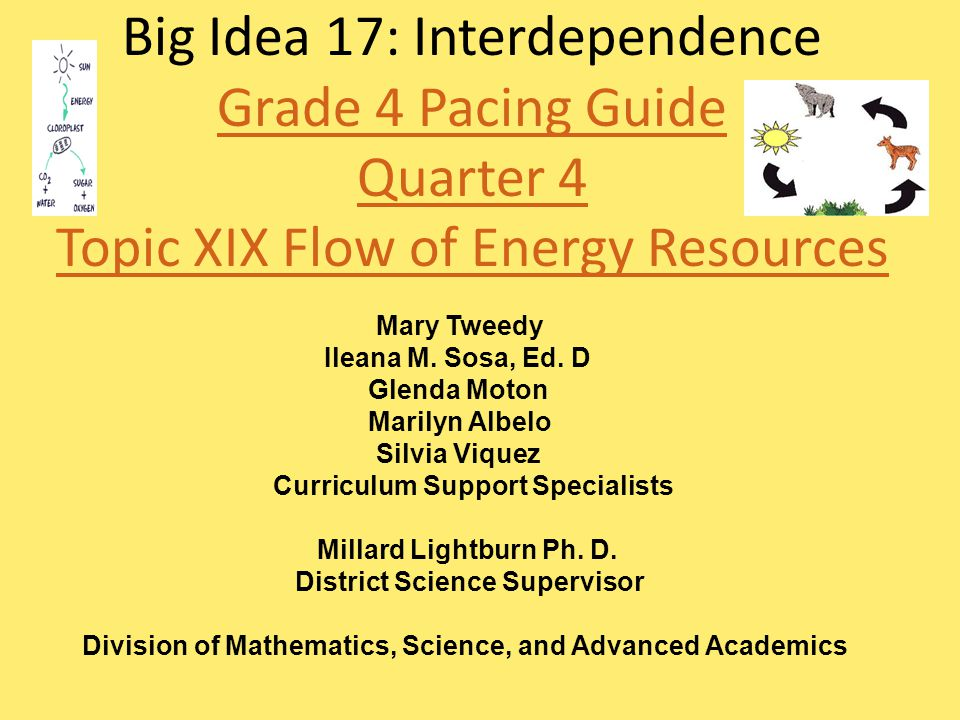 Big Idea 17: Interdependence Grade 4 Pacing Guide Quarter 4 Topic XIX Flow of Energy Resources