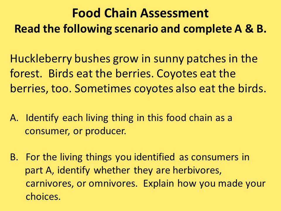 Food Chain Assessment Read the following scenario and complete A & B.