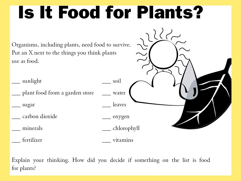 Is It Food for Plants is an informative assessment that engages students in thinking about their own ideas about the topic being studied and