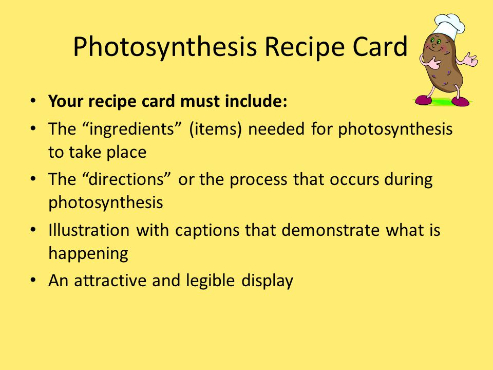 Photosynthesis Recipe Card