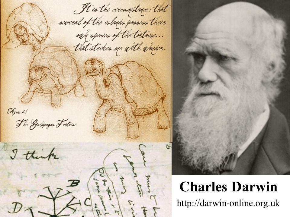 Charles Darwin http://darwin-online.org.uk