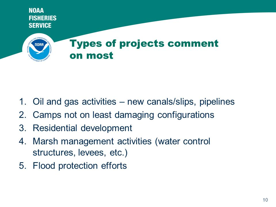 Types of projects comment on most