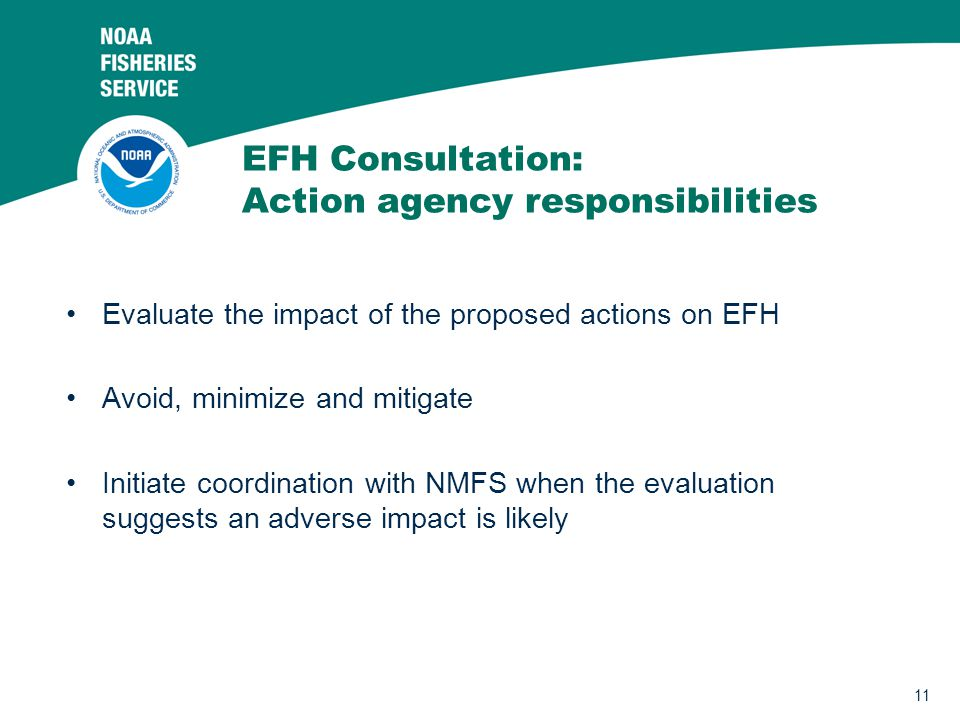 EFH Consultation: Action agency responsibilities