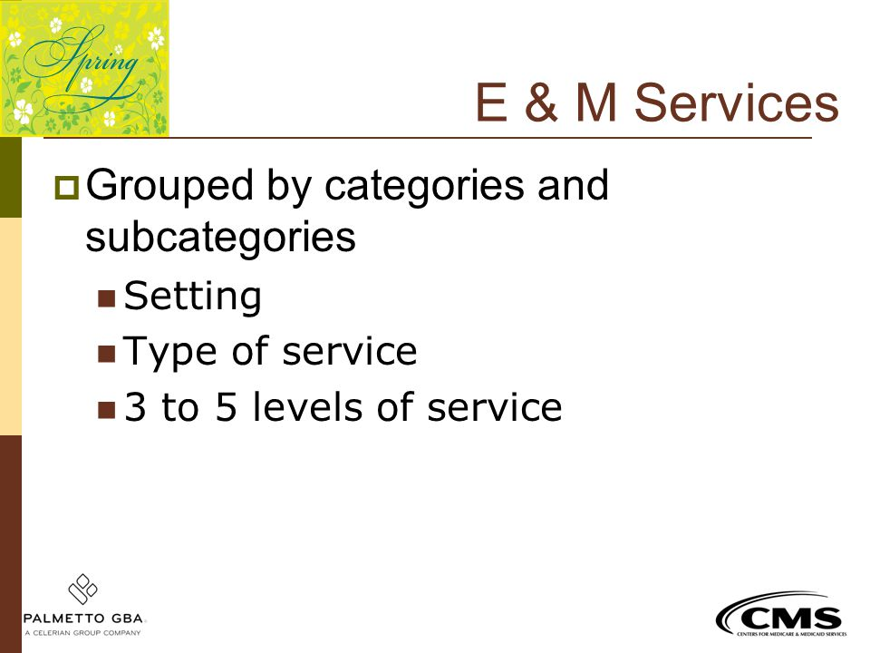 E & M Services Grouped by categories and subcategories Setting
