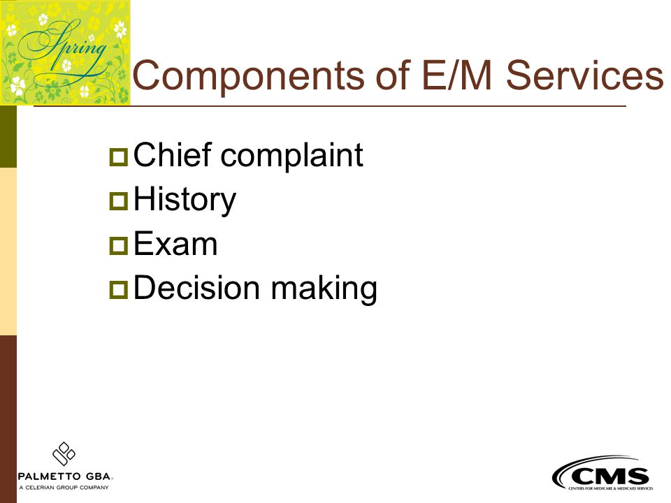 Components of E/M Services