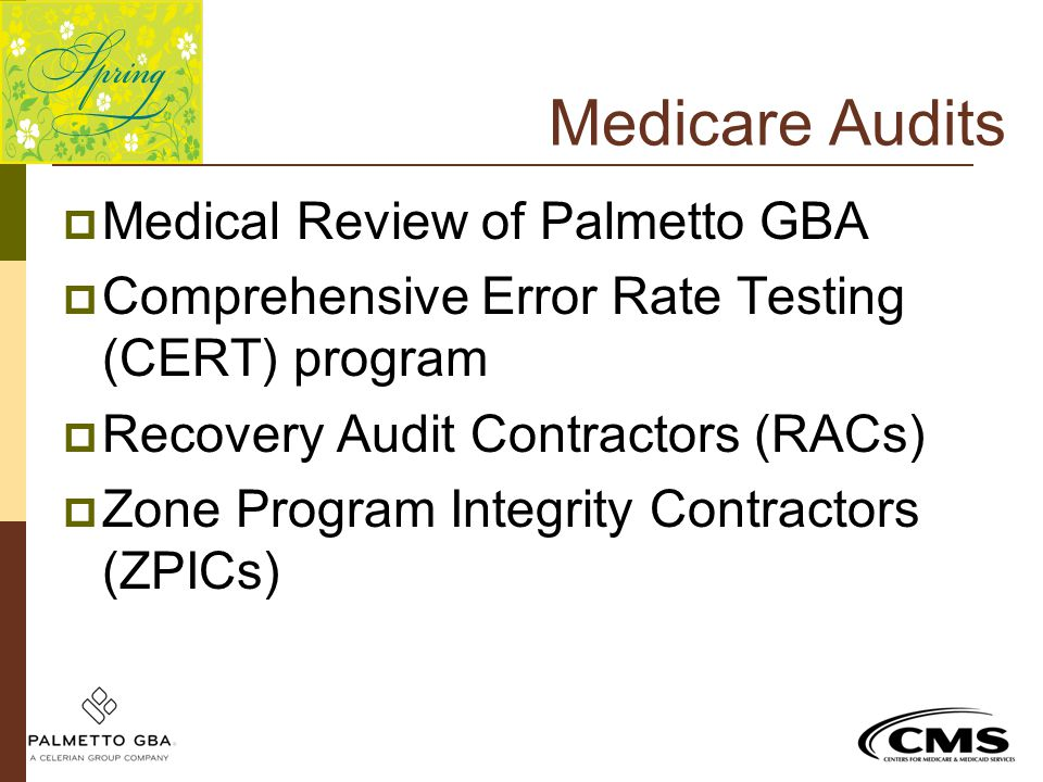 Medicare Audits Medical Review of Palmetto GBA