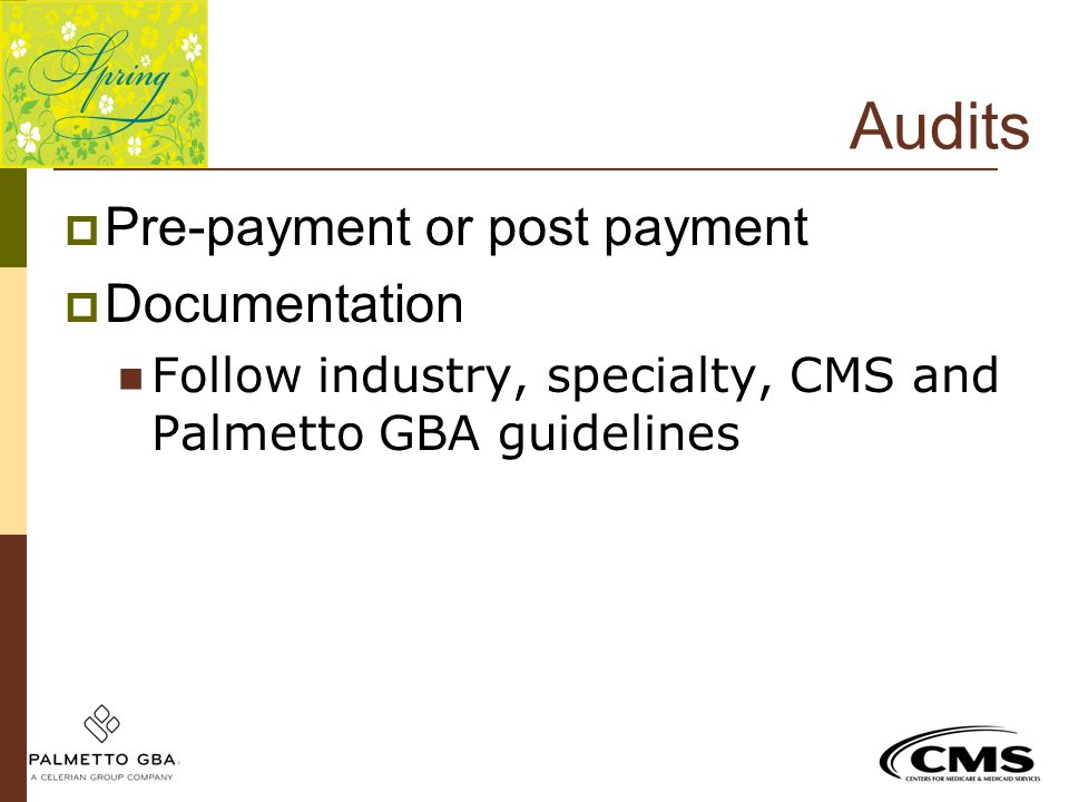 Audits Pre-payment or post payment Documentation