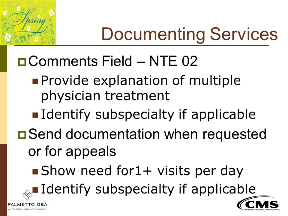 Documenting Services Comments Field – NTE 02
