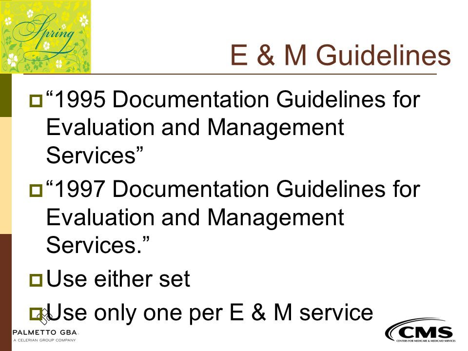 E & M Guidelines 1995 Documentation Guidelines for Evaluation and Management Services
