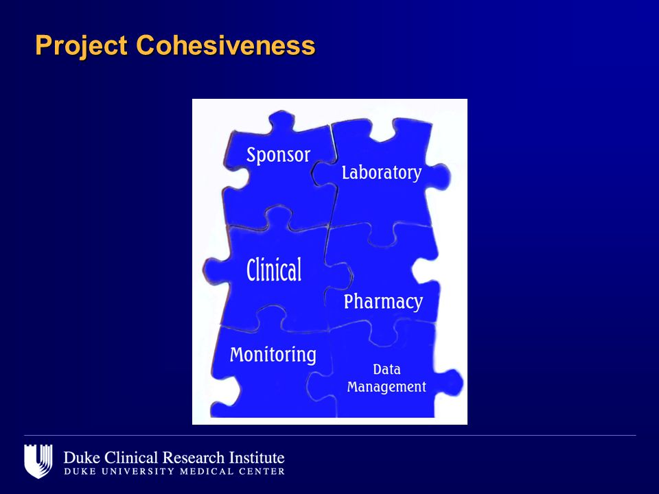 Project Cohesiveness