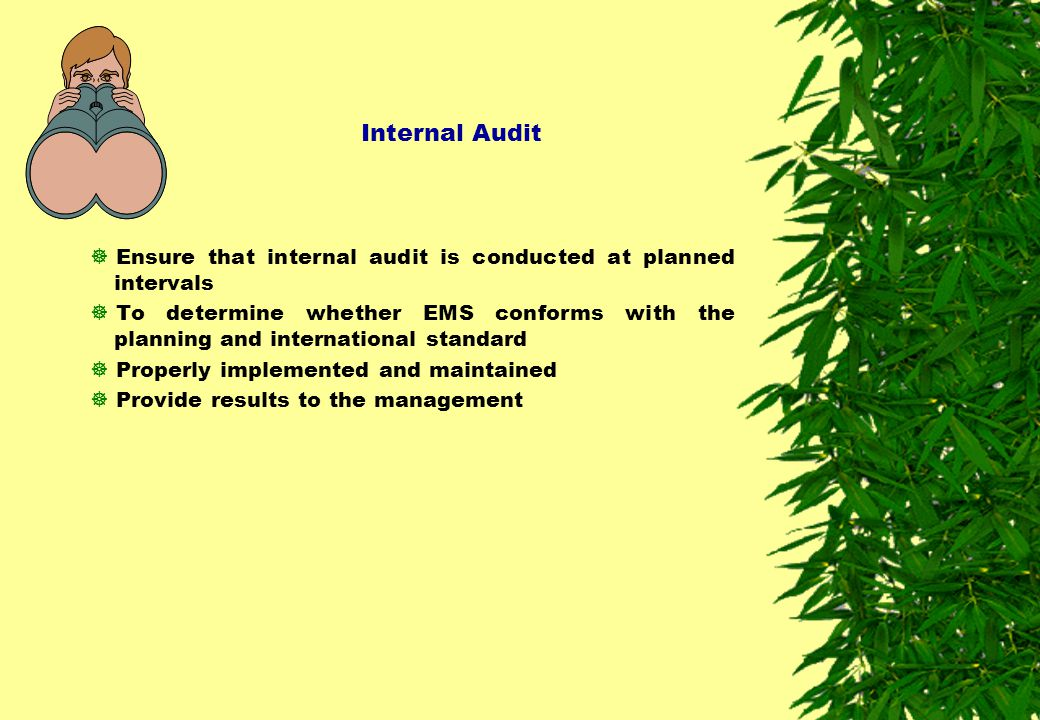 Internal Audit Ensure that internal audit is conducted at planned intervals.