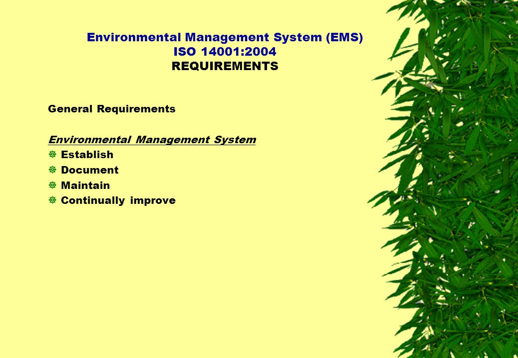 Environmental Management System (EMS) ISO 14001:2004 REQUIREMENTS