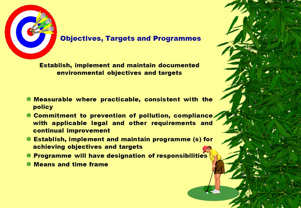 Objectives, Targets and Programmes