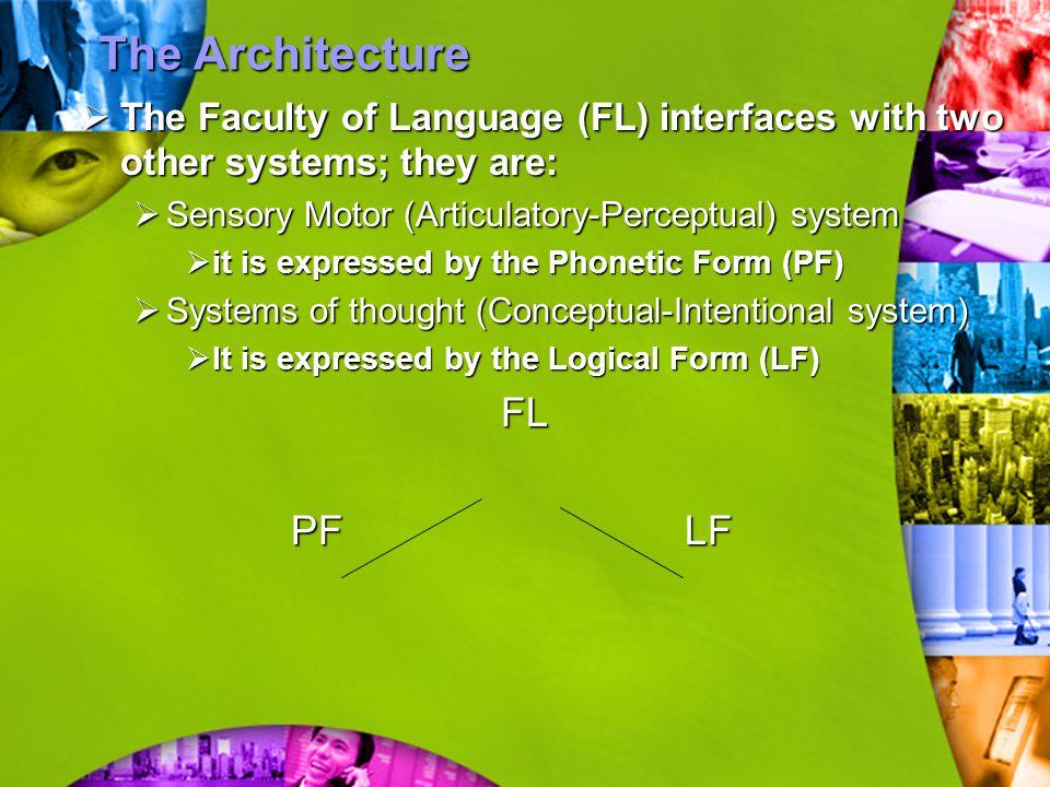 The Architecture FL PF LF