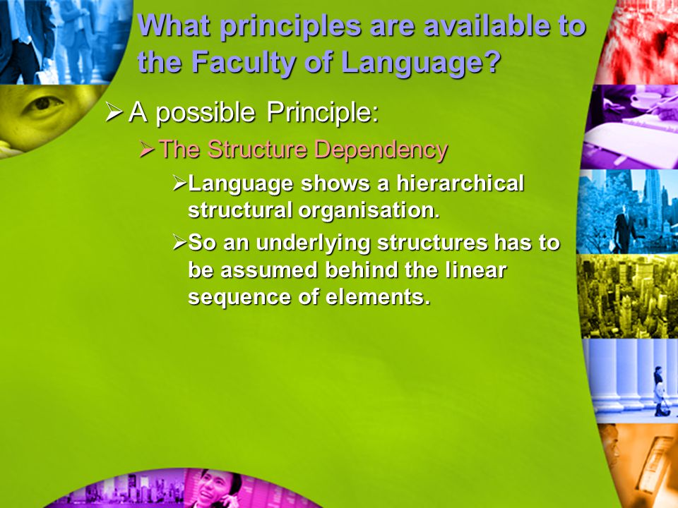 What principles are available to the Faculty of Language