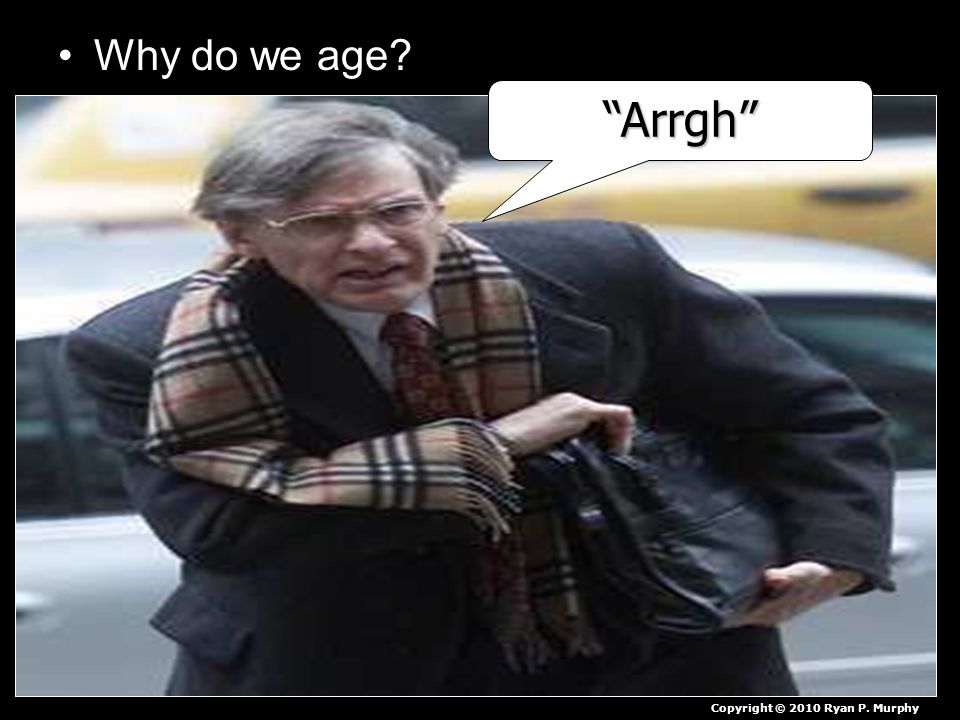 Why do we age Arrgh Copyright © 2010 Ryan P. Murphy