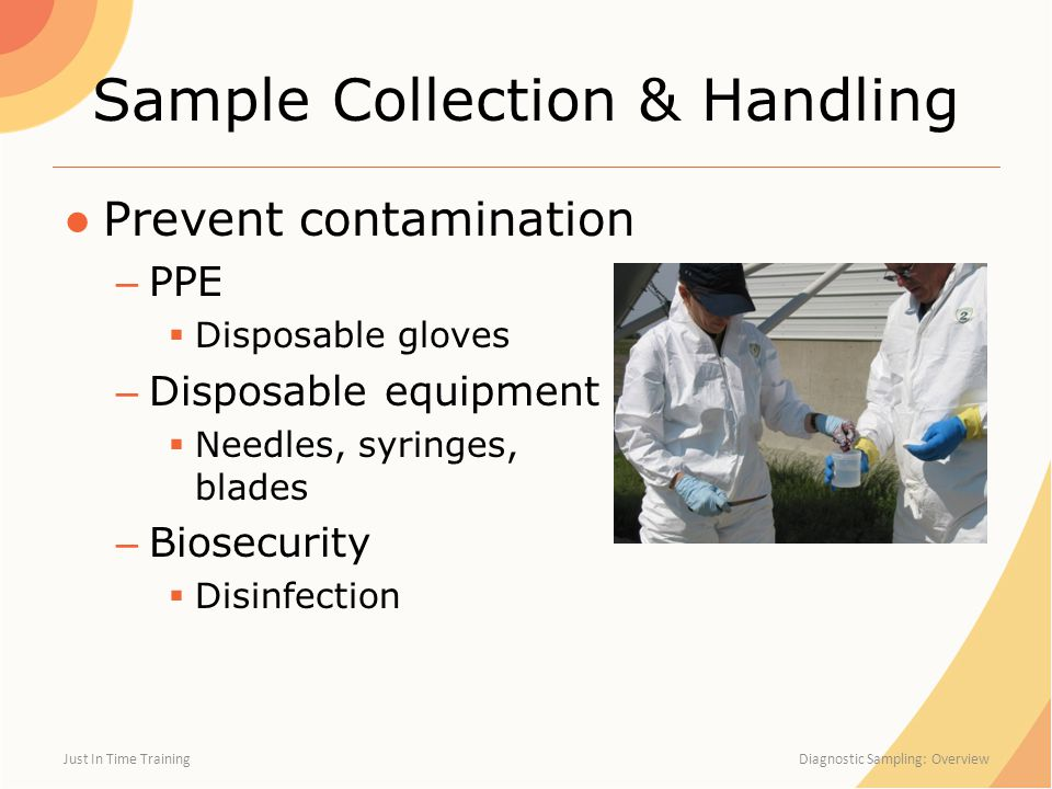 Sample Collection & Handling