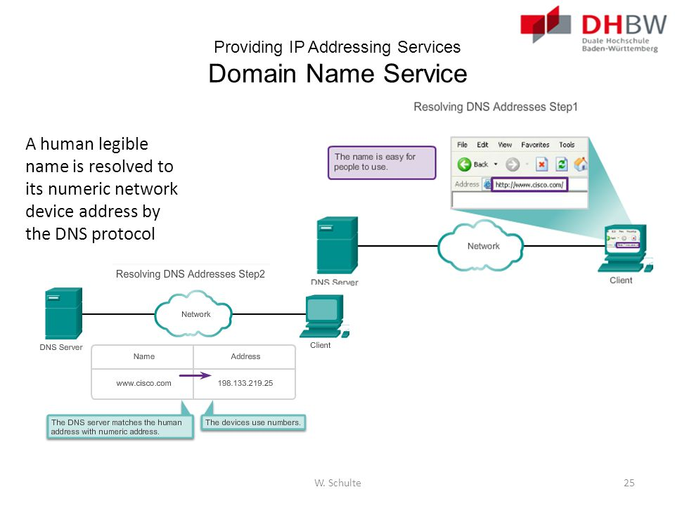 Providing IP Addressing Services Domain Name Service