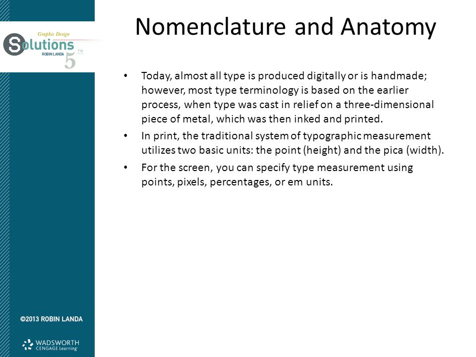 Nomenclature and Anatomy