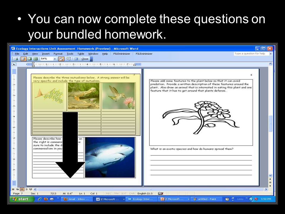 You can now complete these questions on your bundled homework.