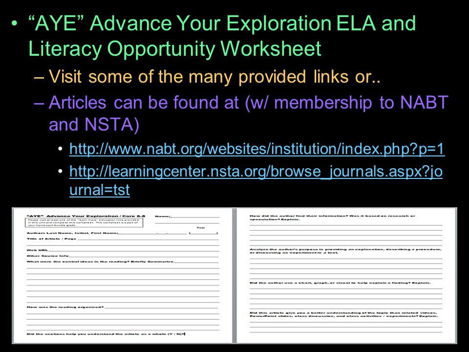 AYE Advance Your Exploration ELA and Literacy Opportunity Worksheet