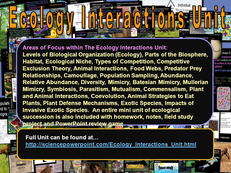 Ecology Interactions Unit