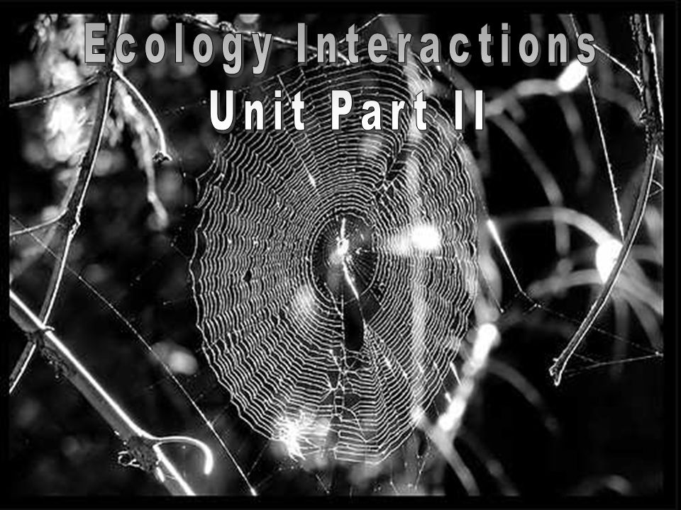 Ecology Interactions Unit Part II