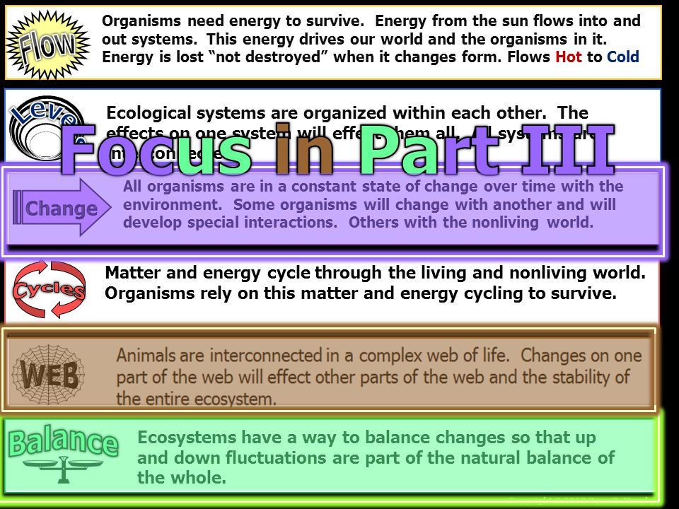 Focus in Part III Flow Levels WEB Balance Cycles Change