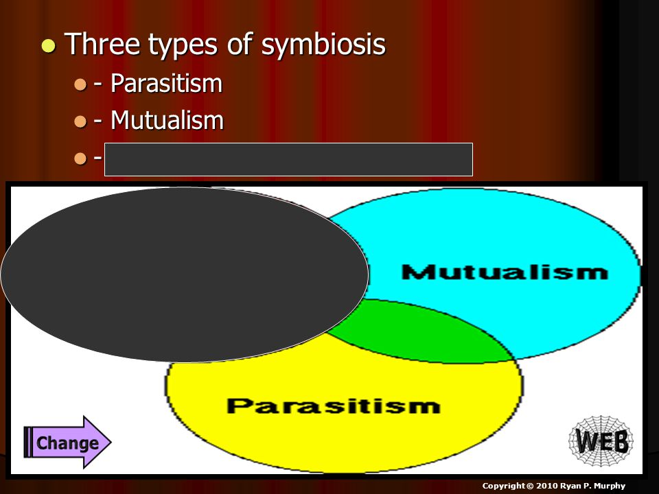 Three types of symbiosis